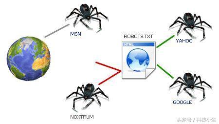 超级蜘蛛池之robots的优化