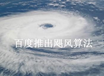 """超级蜘蛛池之网站中了""""飓风算法"""""""