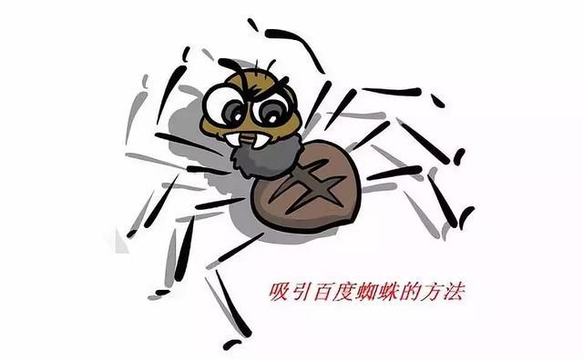 让你网站秒被蜘蛛抓取的seo大招