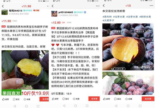 实操分享:小白轻松月入10000+的闲鱼玩法 流量 网赚 电子商务 经验心得 第2张