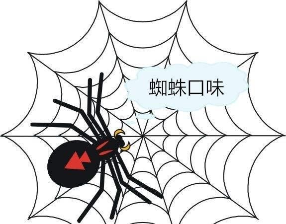 临沂Java培训-蜘蛛池是什么?(图3)