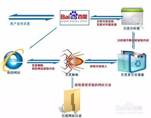 搜索引擎蜘蛛抓取策略,如何吸引更多蜘蛛