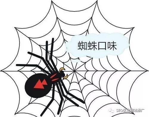 让你网站快速被蜘蛛抓取的十三个方法