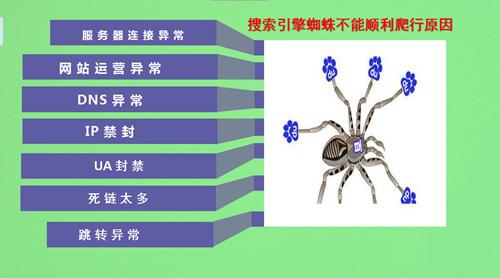 搜索引擎的蜘蛛是如何爬的,如何吸引蜘蛛来抓取页面