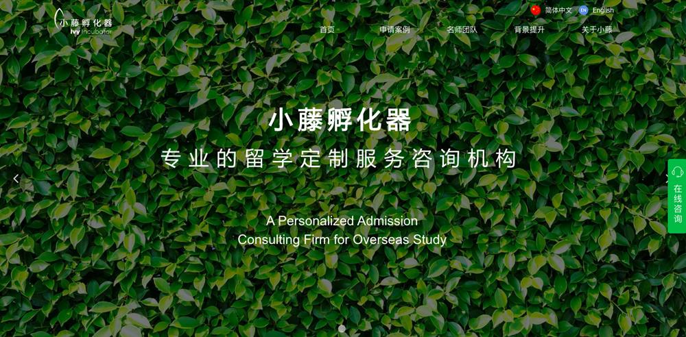 图为小藤孵化器搭建的网站